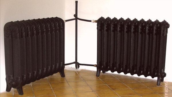 Чугунные радиаторы FAKORA DRAGON