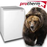 Protherm серии Медведь PLO